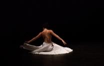 Resistência de companhias e coletivos de dança em Cena CumpliCidades