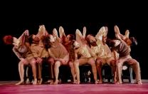 Dùvido, da Cia Sopro de Zéfiro, encerra temporada do Quartas da Dança