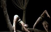 Deborah Colker volta ao Recife com o espetáculo Nó