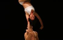 15º Festival de Circo do Brasil transforma Recife num grande picadeiro