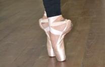 Ciclo de palestras online para profissionais de balé clássico